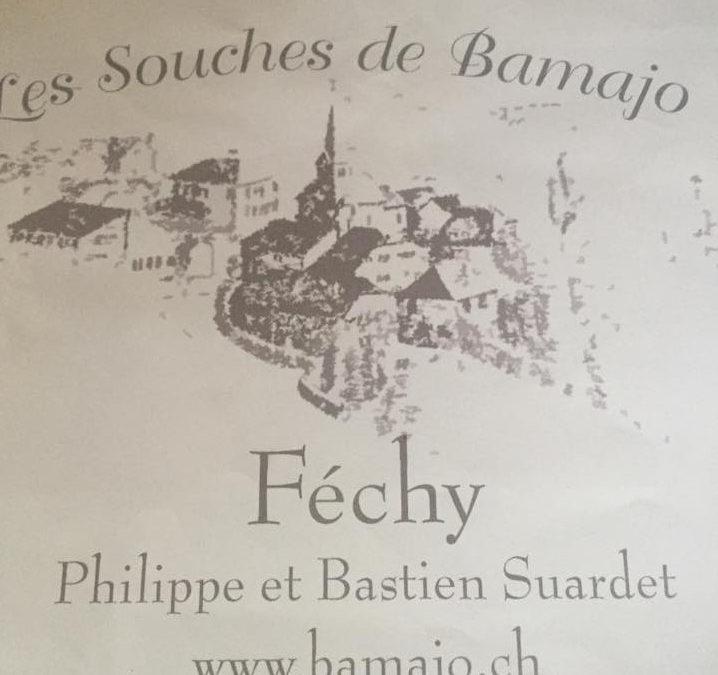 Les Souches de Bamajo